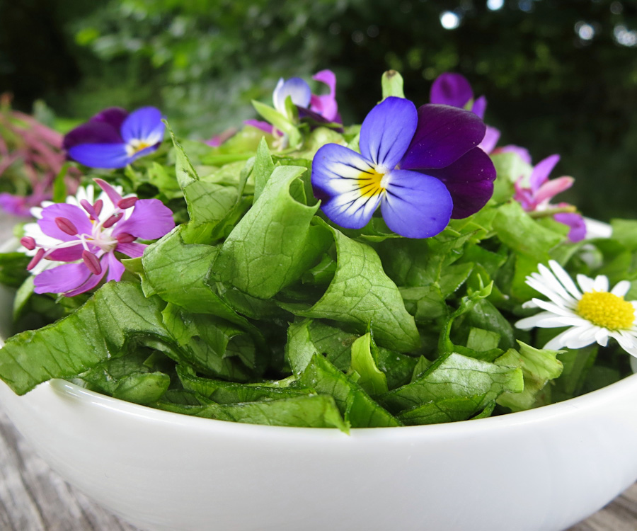 Naturmad-salat-blomst-1200x1000