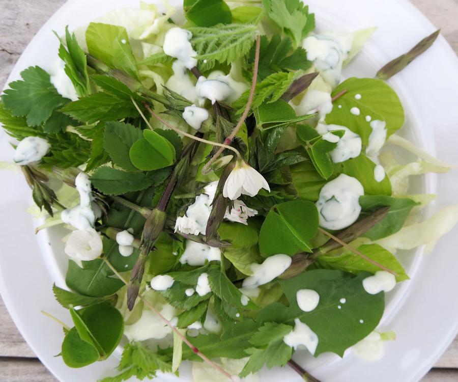 Naturmad-salat-m-skovsyre1200x1000